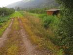 Sorgloser Umgang mit Herbiziden (Foto Umweltschutzgruppe Vinschgau)