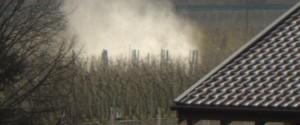 Pestizide gefährden Bienen und die Gesundheit der Menschen