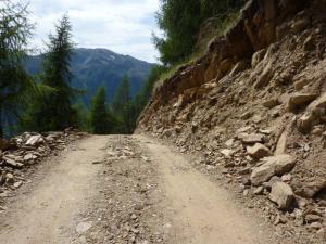So baut man in Südtirol im Natura-2000-Gebiet ökologische Lebensräume