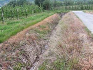 Herbizideinsatz in Tschengls