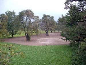 Bei der Ausweisung des Golfplatzes wurde das Fällen und Roden der Bäume strengstens untersagt. Und heute ?