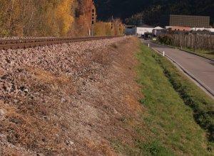 Bahndamm in Naturns mit Herbiziden niedergespritzt