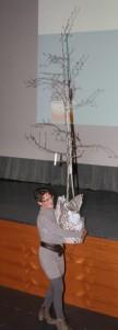 Eine starke Frau mit einem starken Palabirn-Baum