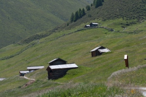 erhaltenswerte Kulturlandschaft in Rojen (Gemeinde Graun)